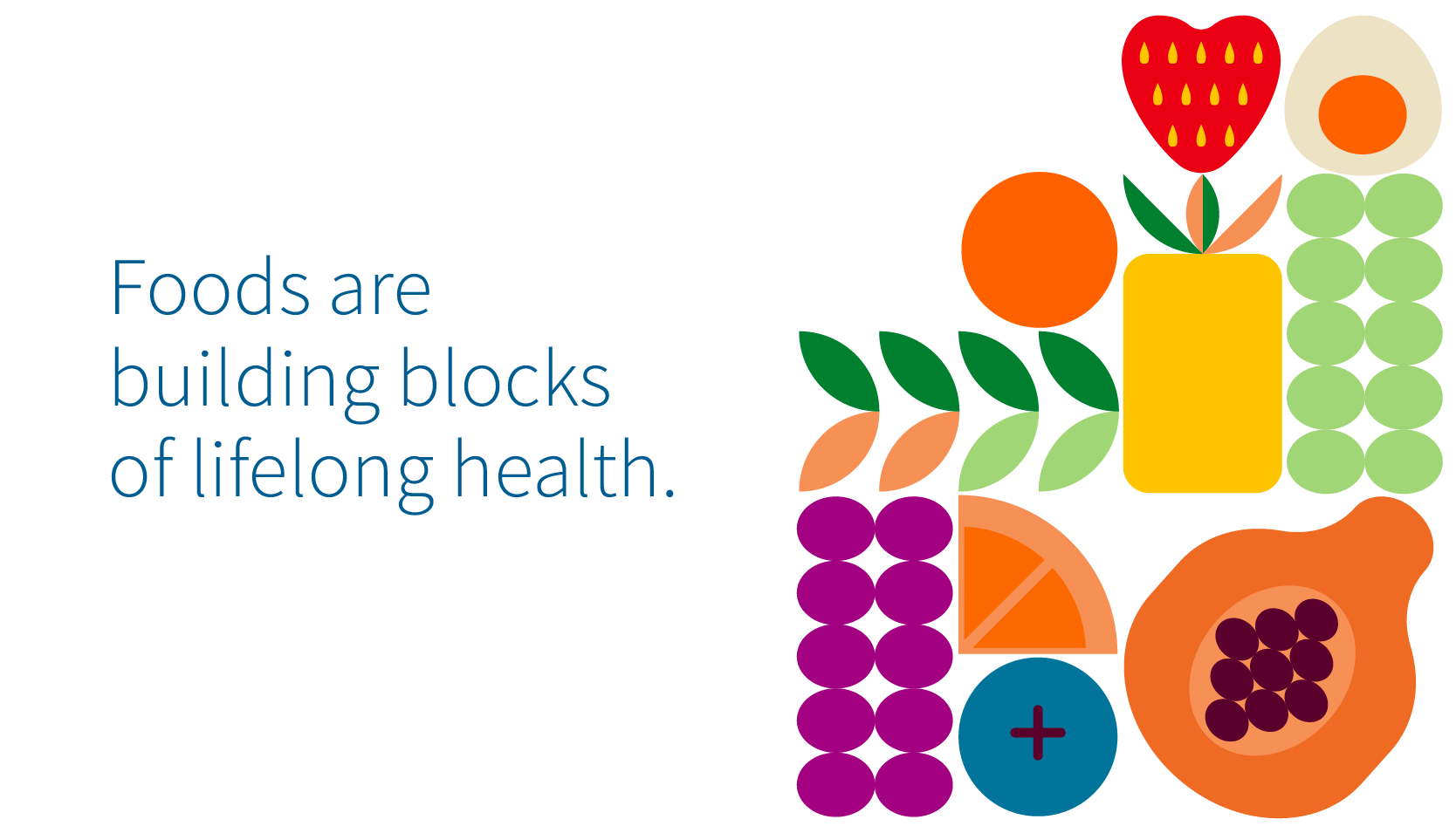 Foods are building blocks of lifelong health